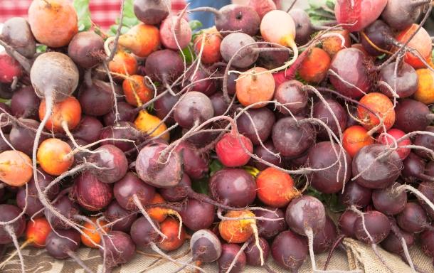 boulder farmers market 9-3-2016 3